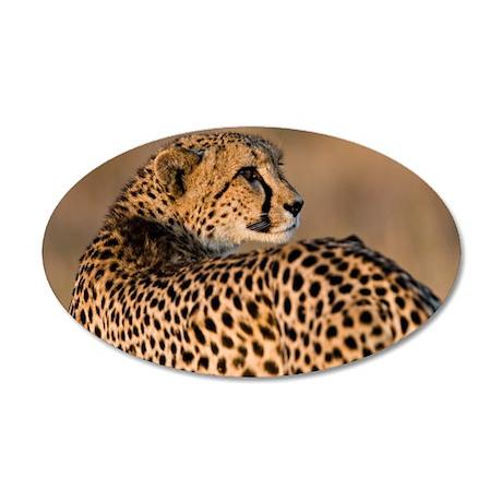 Cheetah 38.5 x 24.5 Oval Wall Peel