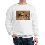 Cheetah Sweatshirt