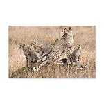Cheetah Family 22x14 Wall Peel