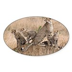 Cheetah Family Sticker (Oval 50 pk)