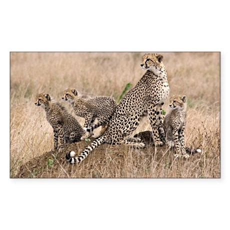Cheetah Family Sticker (Rectangle)