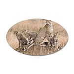 Cheetah Family 22x14 Oval Wall Peel