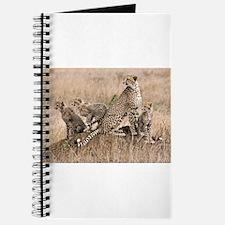 Cheetah Family Journal