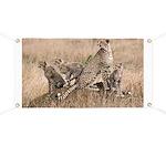 Cheetah Family Banner