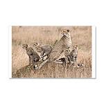 Cheetah Family Car Magnet 20 x 12