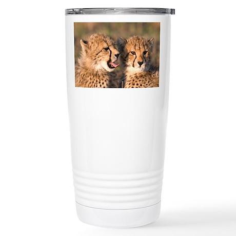 Cheetah cubs Stainless Steel Travel Mug