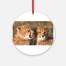 Cheetah cubs Ornament (Round)