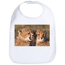 Cheetah cubs Bib