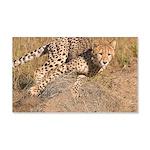 Cheetah On The Move 22x14 Wall Peel