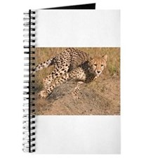 Cheetah On The Move Journal