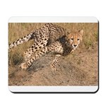 Cheetah On The Move Mousepad