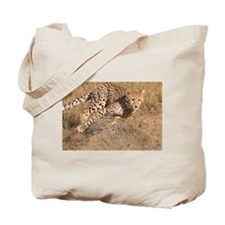 Cheetah On The Move Tote Bag