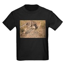 Cheetah On The Move T