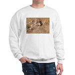 Cheetah On The Move Sweatshirt