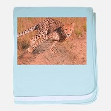Cheetah On The Move baby blanket