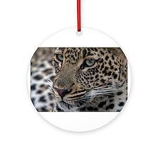 Leopard Portrait Ornament (Round)