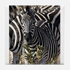 Zebras Tile Coaster
