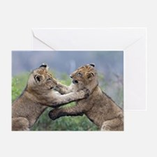 Sparta Cubs Playing Greeting Card
