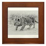 Lion Cub Stalking Framed Tile