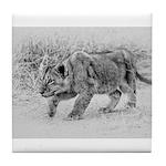 Lion Cub Stalking Tile Coaster