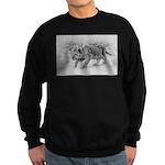Lion Cub Stalking Sweatshirt (dark)