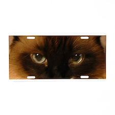 Ragdoll Cat eyes Aluminum License Plate