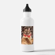 FPG Xmas Cat I Sports Water Bottle