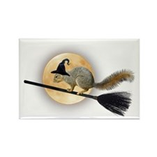 Witch Squirrel Rectangle Magnet