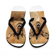 Devilish Waterbucks Flip Flops