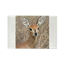 Steenbok Rectangle Magnet
