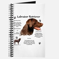 Lab 10 Journal
