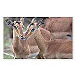 Impala Love Sticker (Rectangle 10 pk)