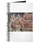 Impala Love Journal