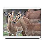 Impala Love Mousepad