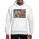 Impala Love Hooded Sweatshirt