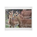 Impala Love Throw Blanket