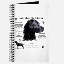Lab 9 Journal