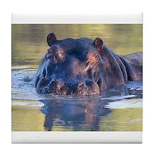 Hippo Tile Coaster