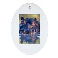 Hippo Ornament (Oval)