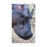 Hippo Profile Sticker (Rectangle 10 pk)
