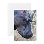 Hippo Profile Greeting Card