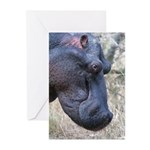 Hippo Profile Greeting Cards (Pk of 10)