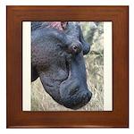 Hippo Profile Framed Tile