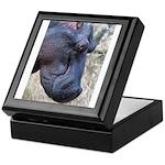Hippo Profile Keepsake Box