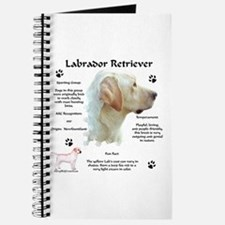 Lab 8 Journal