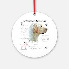Lab 8 Ornament (Round)