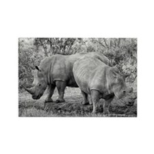 Rhinos Rectangle Magnet