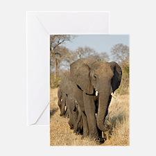 Elephants Stroll Greeting Card