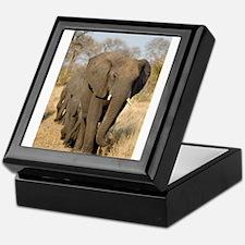 Elephants Stroll Keepsake Box