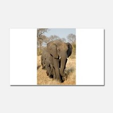 Elephants Stroll Car Magnet 20 x 12